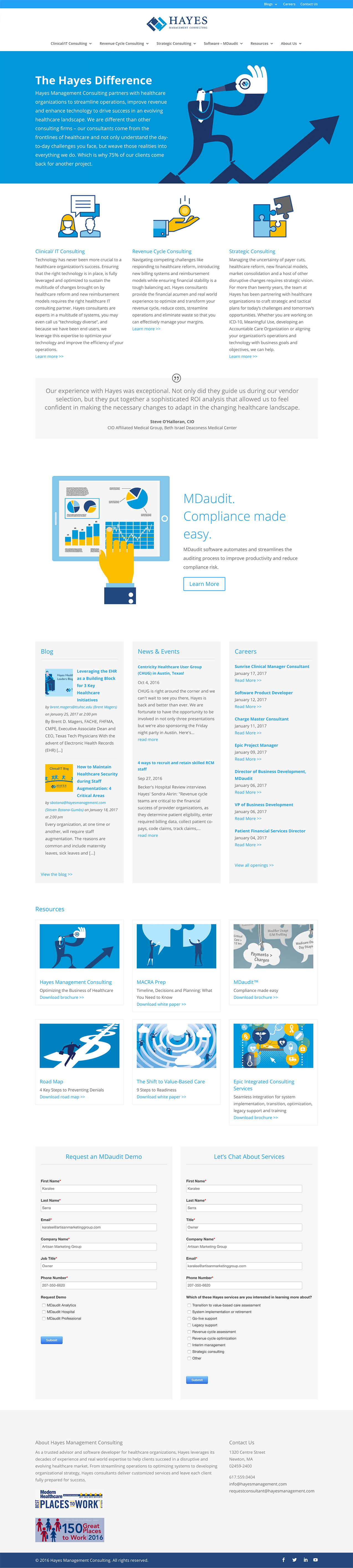 Hayes Management Consulting - Website Design