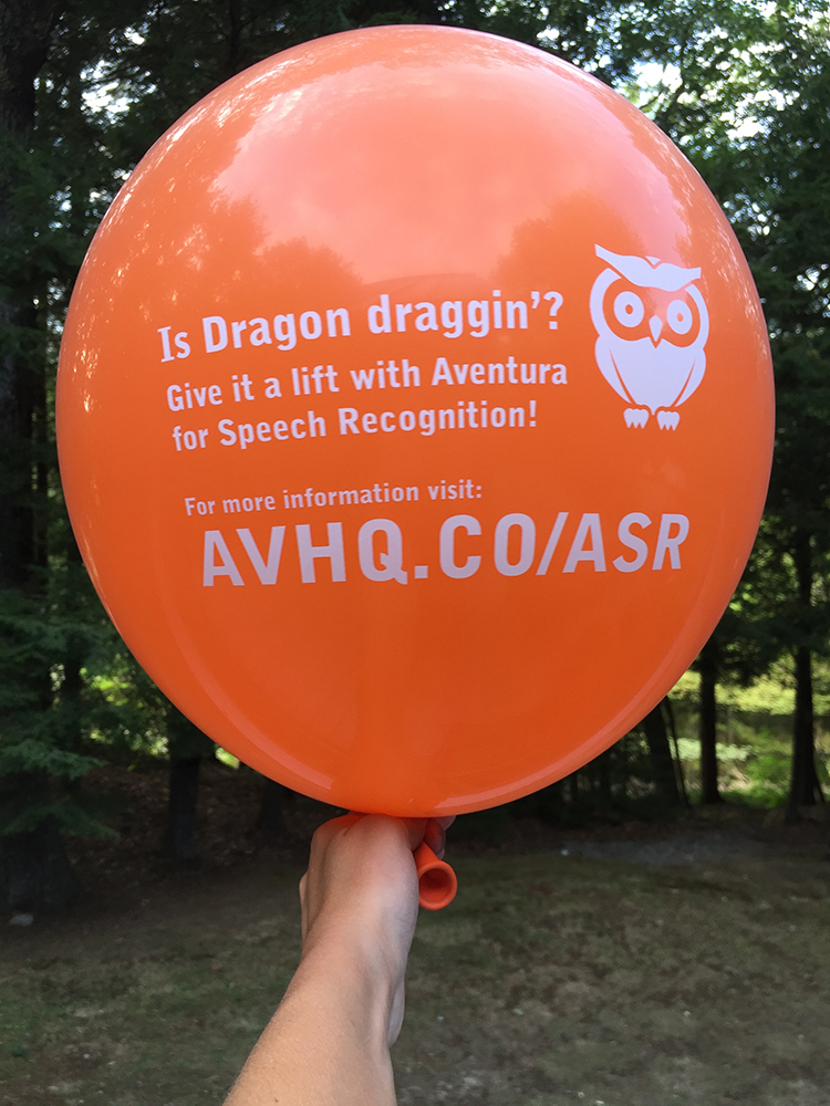 Speech Recognition Campaign